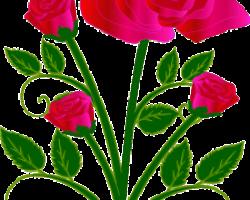 bouquet-162076_640-225x300.png